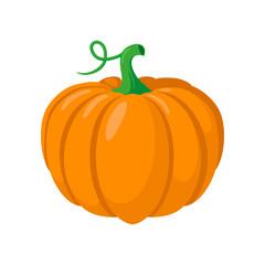 Pumpkin vegetable.