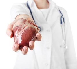 Heart in doctor hand isolated on white