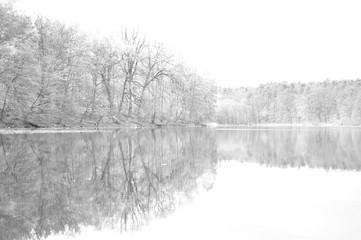 Odbicie lasu w jeziorze (czarno-białe)