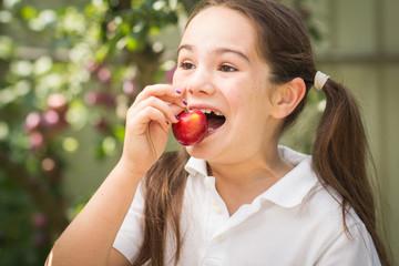 little girl eating plum