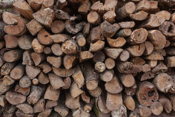Pile of wood for use as firewood for cooking fuel.
