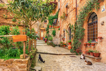 Fototapete - Beautiful alley in old town Tuscany