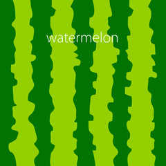 watermelon color background vector