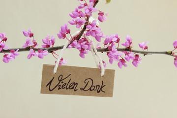 Blütenzweig vom Judasbaum mit Grußkarte