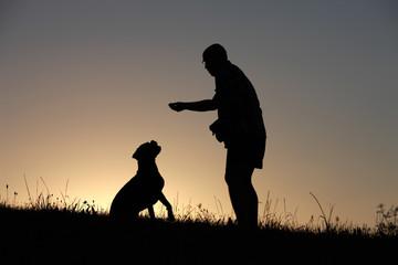 Herrchen und Hund als Silhouette bei Sonnenuntergang