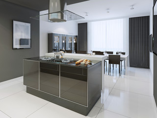 Black and white kitchen modern style
