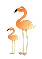duo flamingo