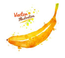 Watercolor of banana.