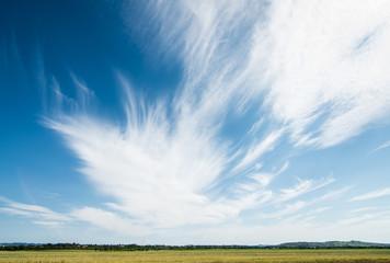 Magic summer sky