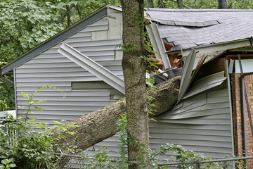 Door stickers Storm Large Tree Falls on a Small House