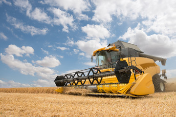 close view of modern combine harvester in action. Wall mural