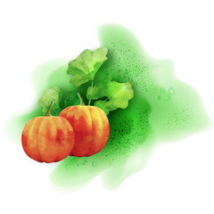 Watercolor Vector Pumpkin