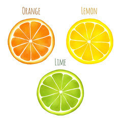 Vectorized watercolor drawing of an orange, lemon and lime with captions isolated on white background.