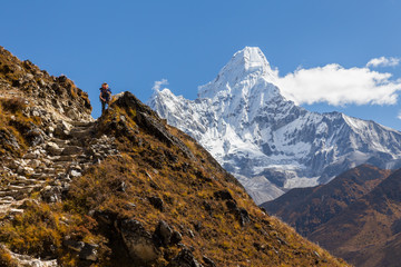 Wall Mural - Woman backpacker standing in front Ama Dablam mountains.