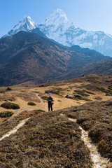 Wall Mural - Woman backpacker standing trail Ama Dablam mountain.