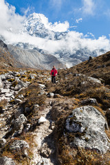 Wall Mural - Woman backpacker standing in front Ama Dablam mountain. Vertical