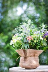 Wiesenblumen im Garten