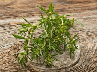 Thyme isolated on wooden background