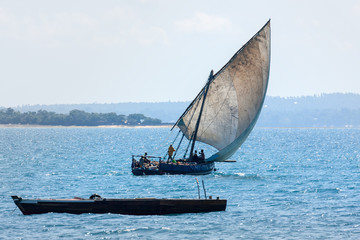 a traditional dhow sailing
