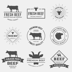 vector set of premium beef labels, badges and design elements