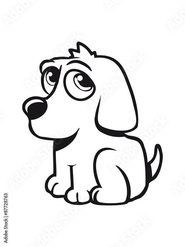 Young sweet sad dog