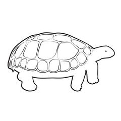 TURTLE OUTLINE VECTOR