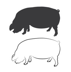 PIG, SWINE silhouette and outline vector