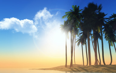 3D palm trees at sunset