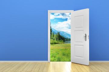 Blue empty room with door open