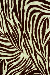 Texture fabric of Zebra for background