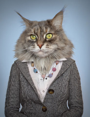 Poster Hipster Animals cat in clothes