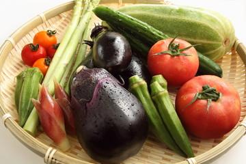 野菜 日本の野菜