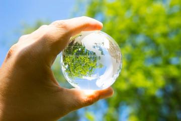 Green & Eco environment, glass globe in the garden