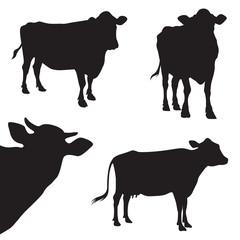 cow silhouette illustration set