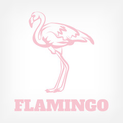 Vector flamingo icon illustration