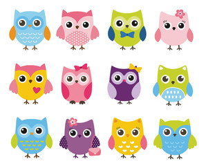Cute vector set of colorful owls