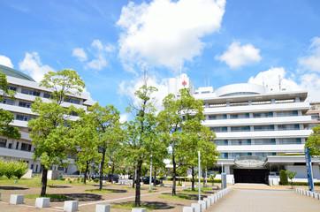 緑と救急病院