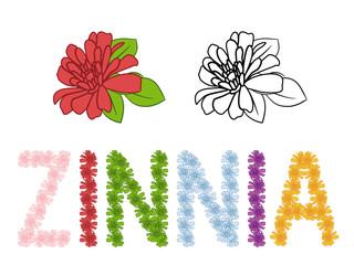 Zinnia colorful vector alphabet.