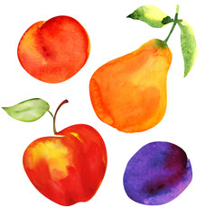 Set of fruits. Apple, pear, plum and apricot.