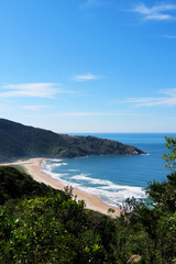 Praia com mar azul e coqueiros