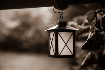 Small lantern hanging in garden