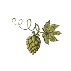Stylized flower of beer hops.