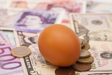 Egg lying on banknotes and coins
