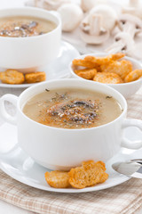 mushroom soup puree with croutons in bowl