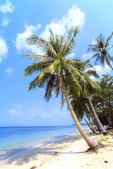 Tropical beach Bang Por, Koh Samui's north coast. Thailand. Koh Samui island