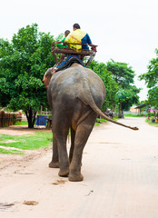 Tourists riding elephants in Surin,Thailand