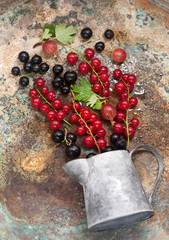 Summer berries on  metal background. Red currants, black currants and gooseberries