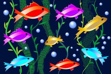 Aquarium with bright colored fishes, aquatic plants and air bubbles. Decorative picture for the aquarium shop, or for fish restaurant