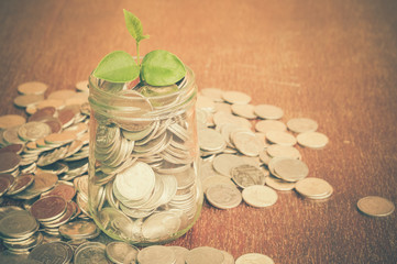 plant growing out of coins with filter effect retro vintage styl