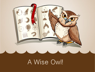 Wise owl and science book